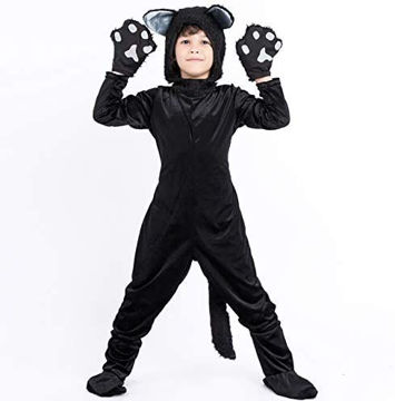 Picture of Boys Black Cat Cosplay Costume 3-Piece Suit