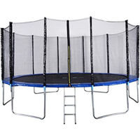 Picture of Idealt Outdoor Sports Garden Trampoline With Safety Enclosure (10Ft)