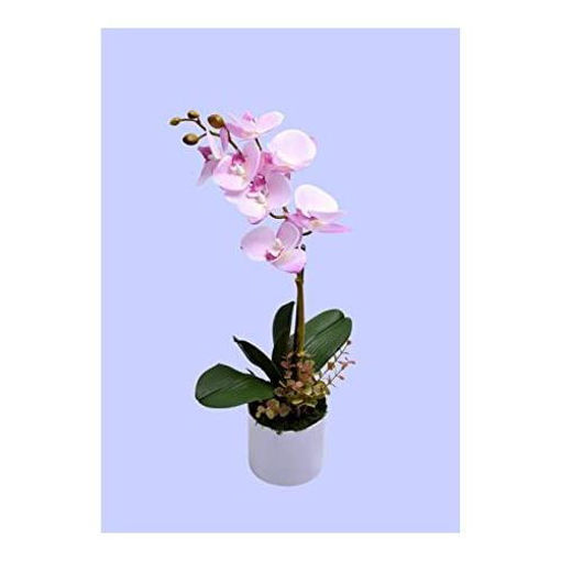 Picture of Yatai Real Touch Artificial Orchid Flower with Moss, Light Purple