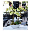 Picture of Yatai Silk Artificial Orchid Flowers In Ceramic Vase, Yellow