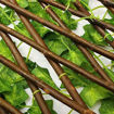 Bamboo Fencing for Garden Decoration, Green Online Shopping
