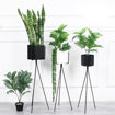 Neo Front Plant Rack Set, 3 Pieces, Black Online Shopping