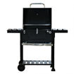 Outdoor Garden BBQ Stand With Equipment - Black Online Shopping